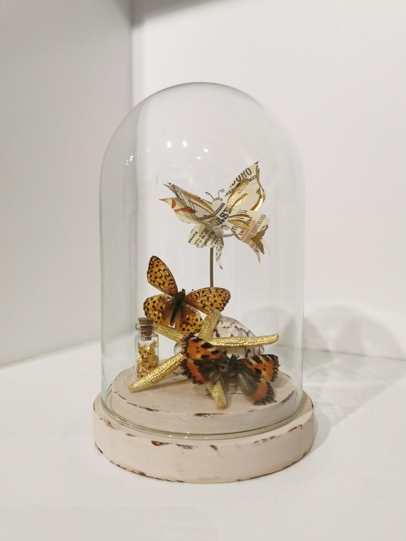 Cloche / Dome / Globe Papillons sur coquillage PIECE UNIQUE ARTISTE FRANCAISE
