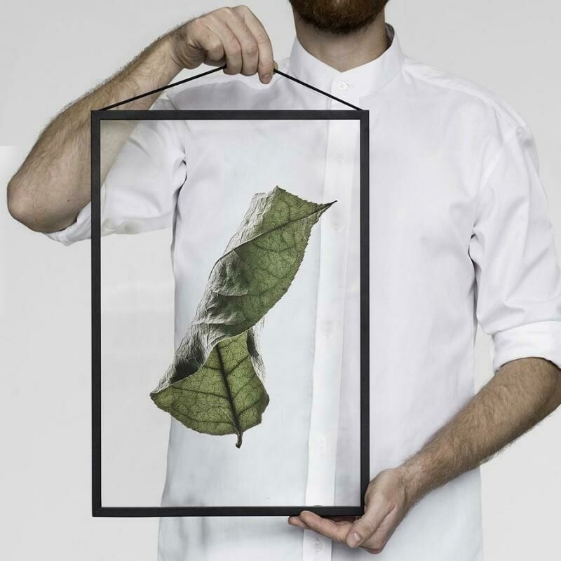 Affiche Floating Leaves 04 Transparent A3