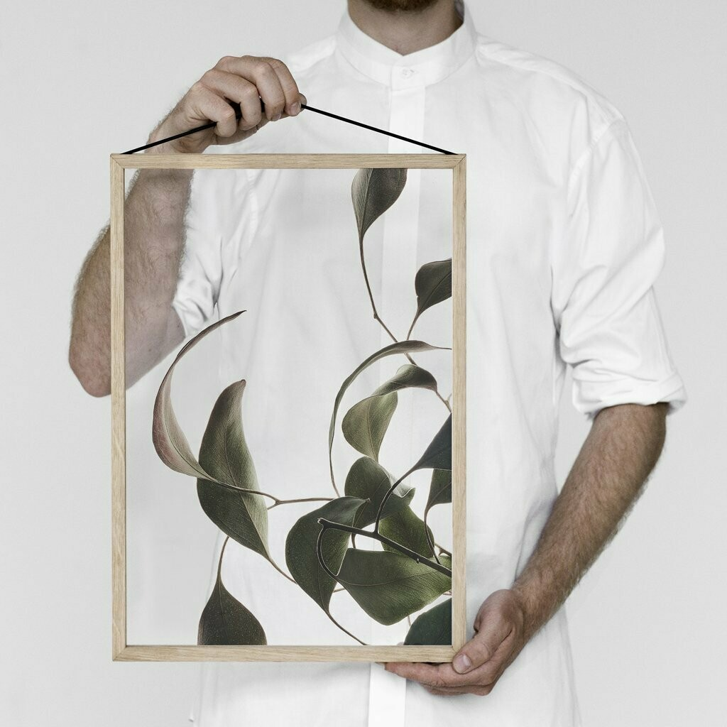 Affiche Floating Leaves 08 Transparent A3