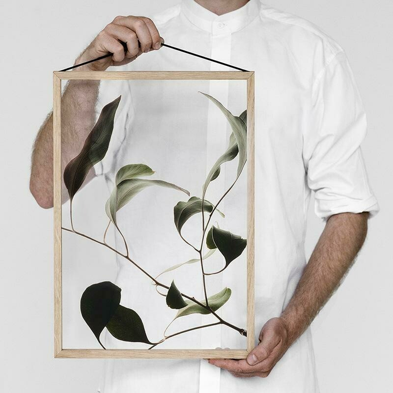 Affiche Floating Leaves 09 Transparent A3