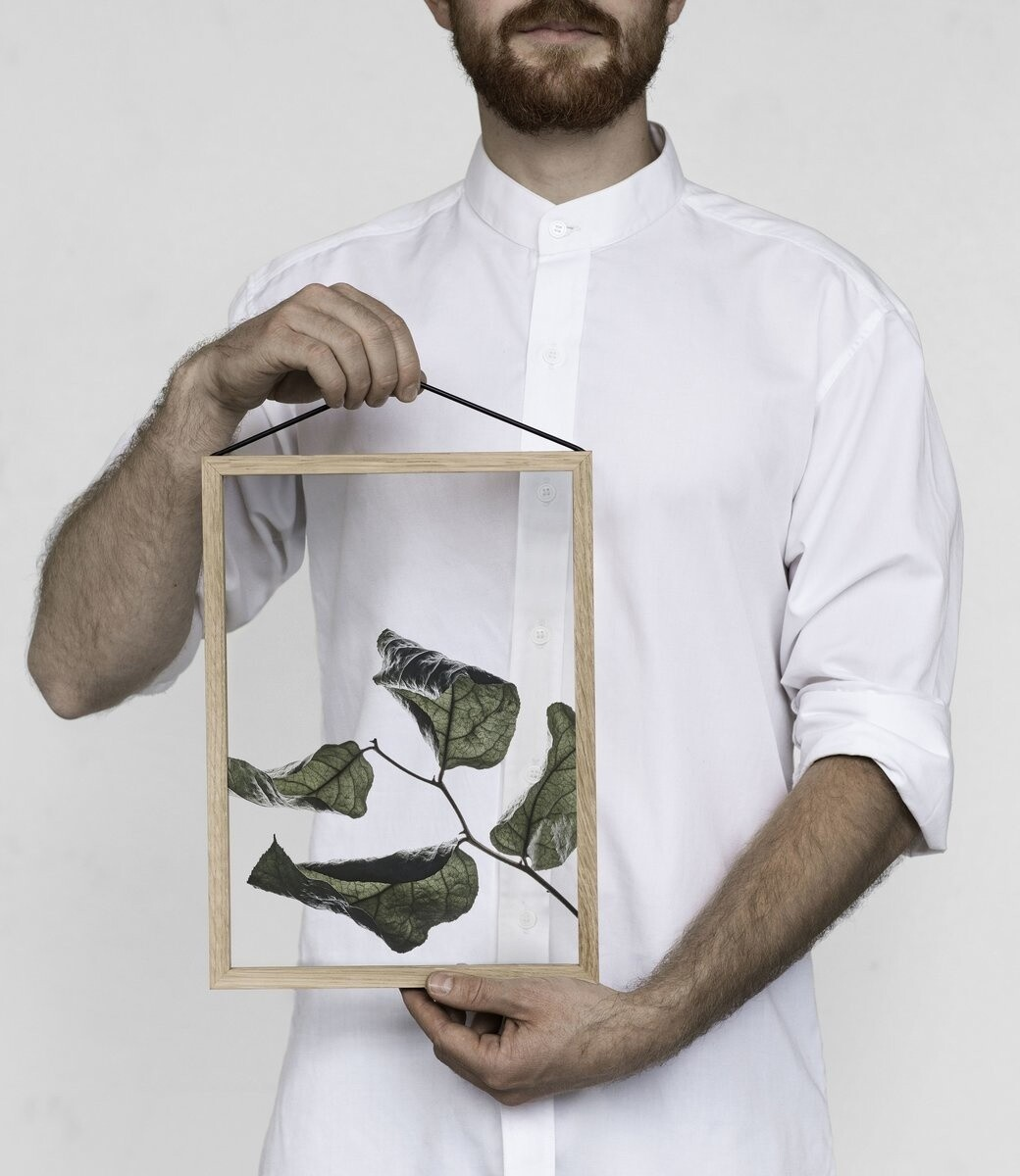 Affiche Floating Leaves  transparent 03    A4