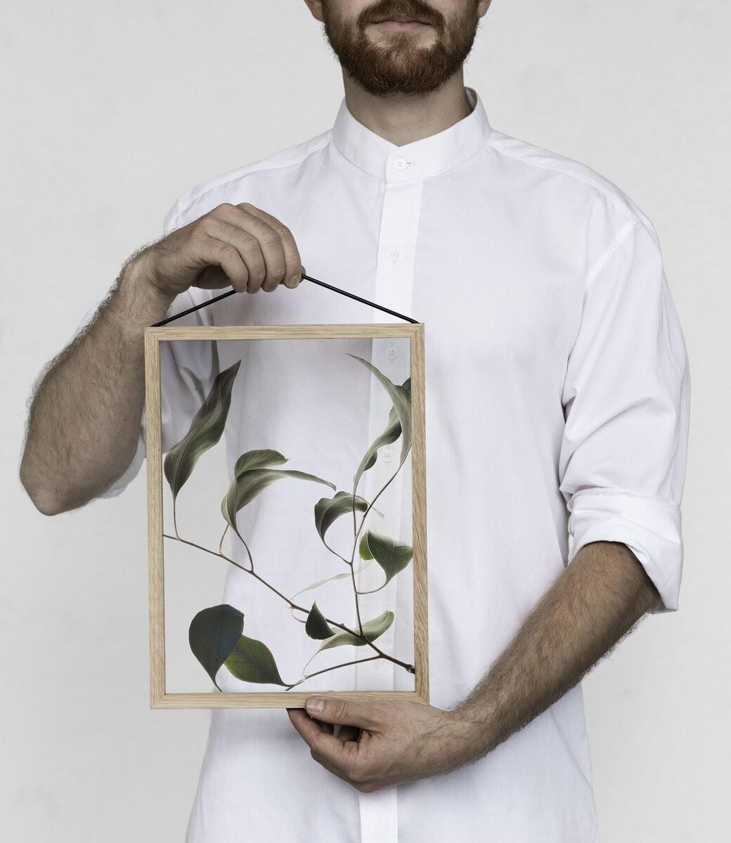 Affiche Floating Leaves 09 Transparent  A4