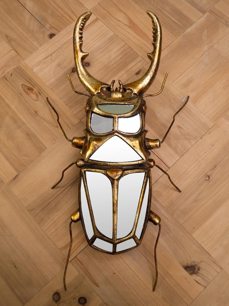 Miroir Insecte Lucane