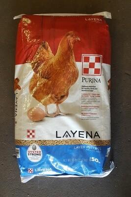Layena Layer Pellet - Purina, 50 lb.