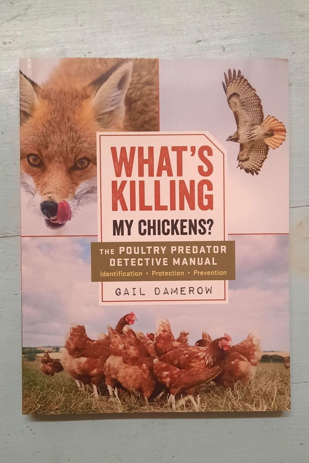 What's Killing My Chickens? by Gail Damerow