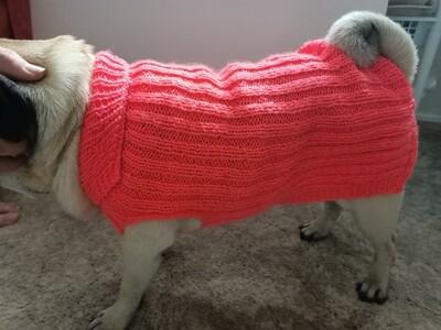 Dog Coat (ref # 201)