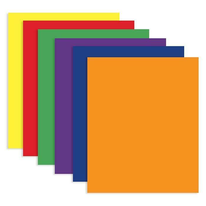 Bazic / 2-Pockets Portfolios Assorted Color