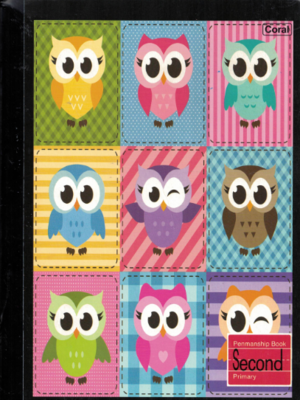 Notebook Owl Second