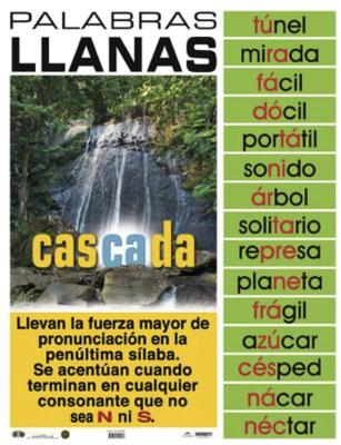 Poster Palabras Llanas