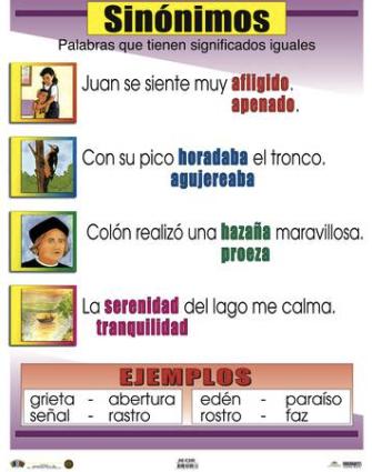 Poster Sinónimos
