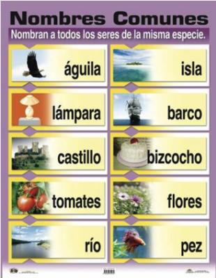 Poster Nombres comunes