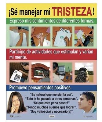Poster ¡Sé Manejar Mi Tristeza!