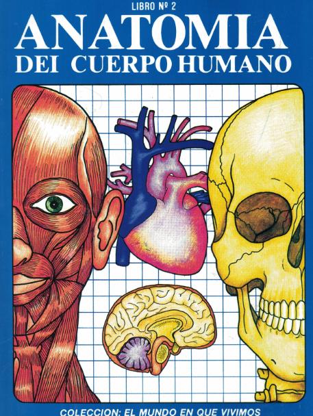 Láminas de Anatomía del cuerpo humano