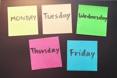 Basic Meal Plan (Bi-weekly)