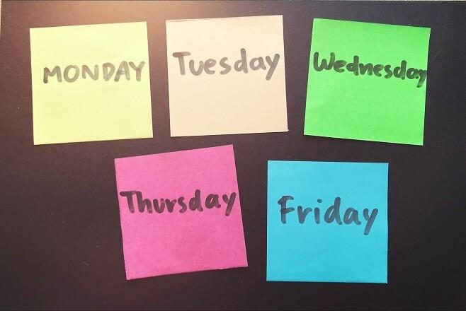 Premium Bi-weekly Plan