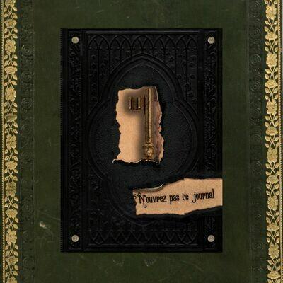 N'ouvrez pas ce Journal - Helena W. Rimbauer