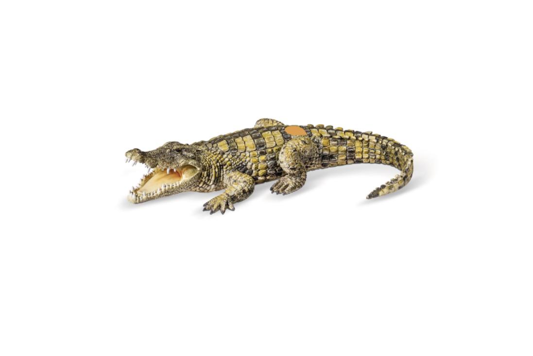 TIPTOI RAVENSBURGER CROCODILE ANIMAL ANIMAUX 4005556003631 JEU JOUET JEUX EDUCATIF CREATION NOEL COMASOUND KARTEL CSK ONLINE
