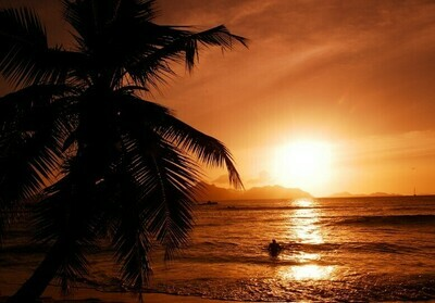 Sunset Cruise inlc. Softdrinks