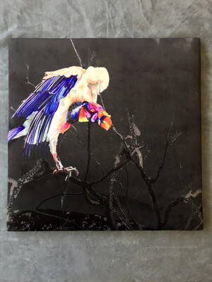 King Vulture Padded wall art