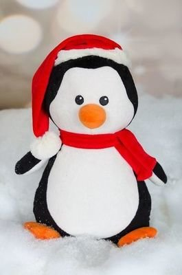 Penguin - Holiday
