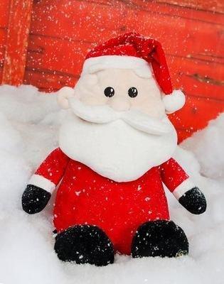 Santa - Holiday
