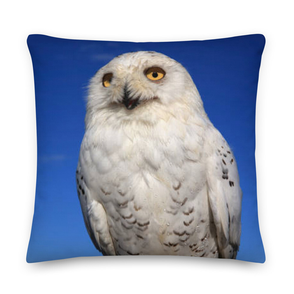 Snow White Owl Pillow