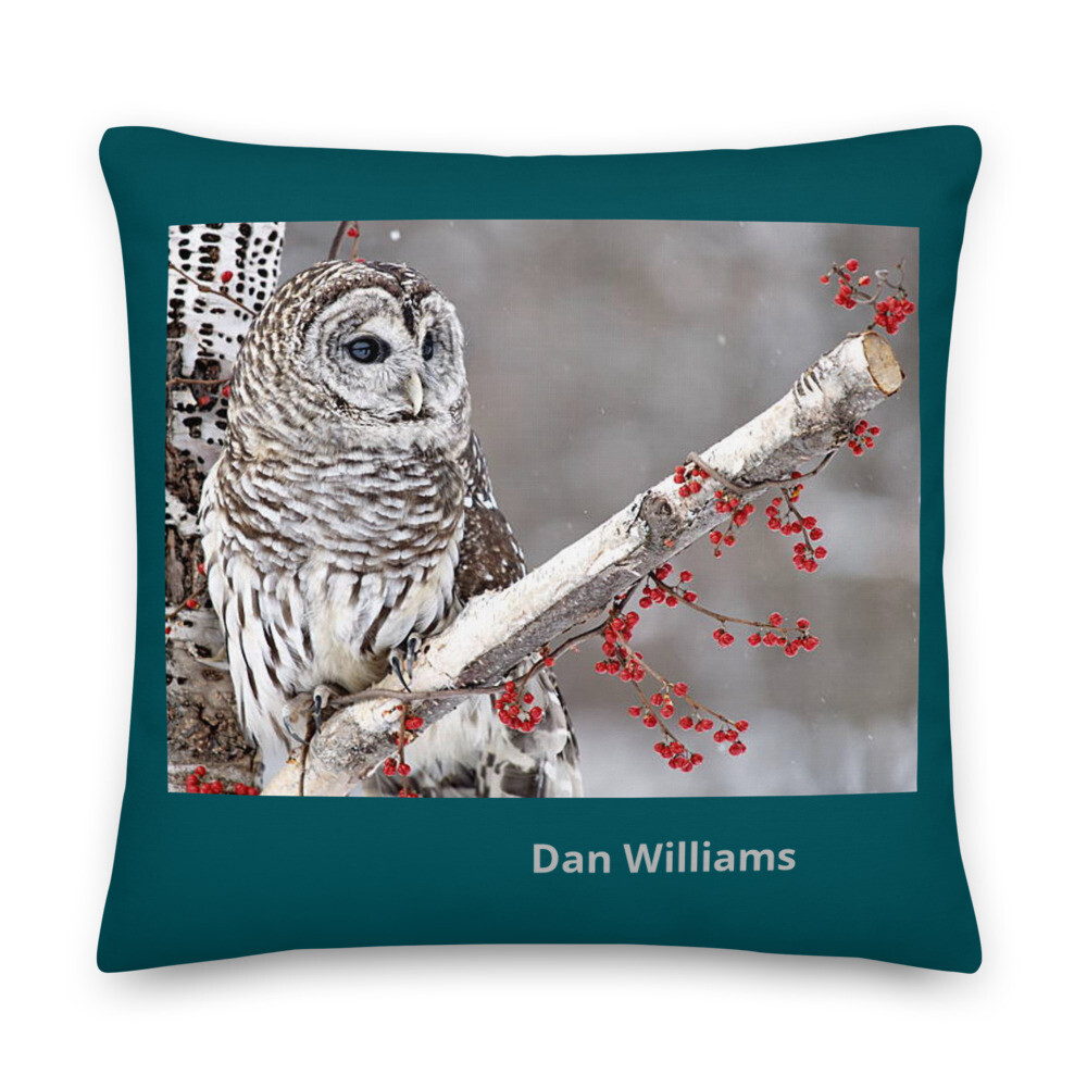 Snowy Owl Premium Pillow
