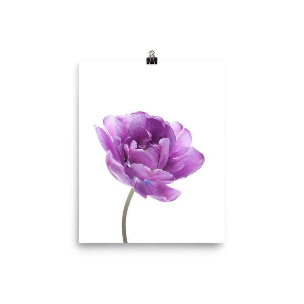 Violet Solo Poster