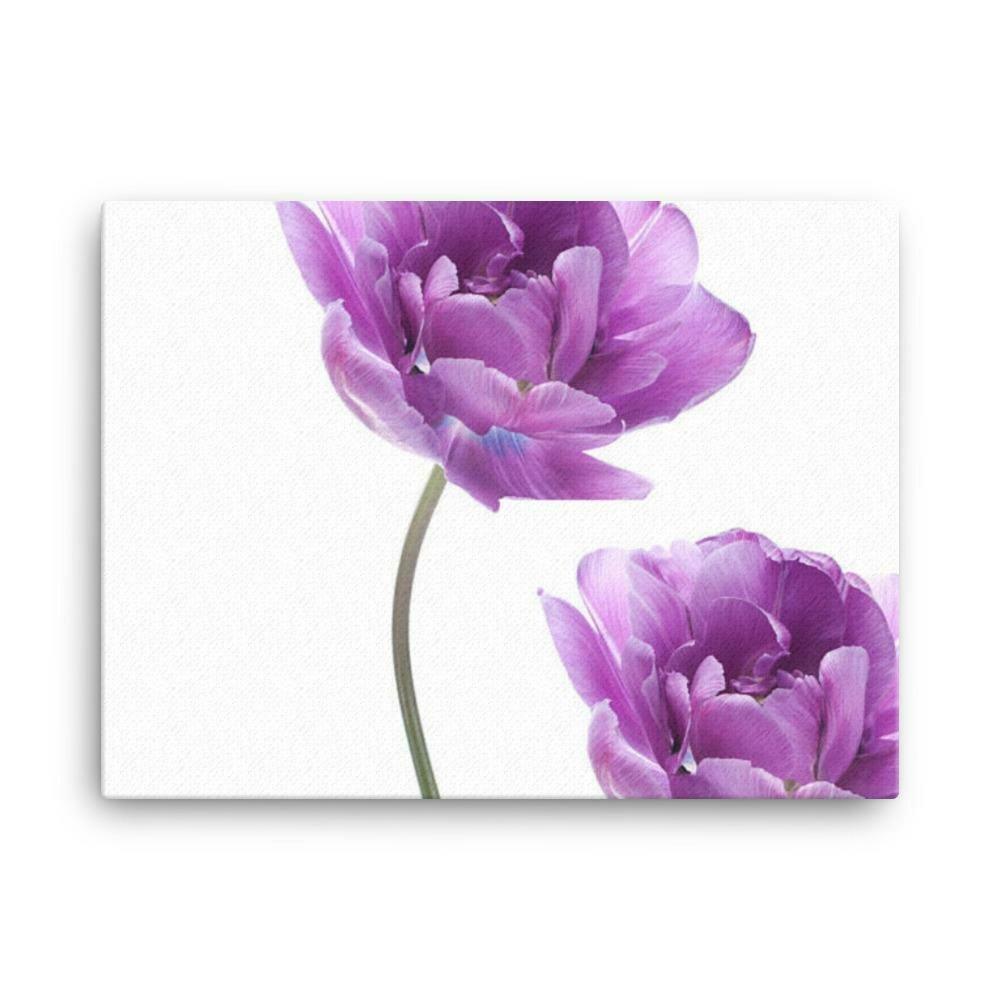 Violets and magnolias canvas