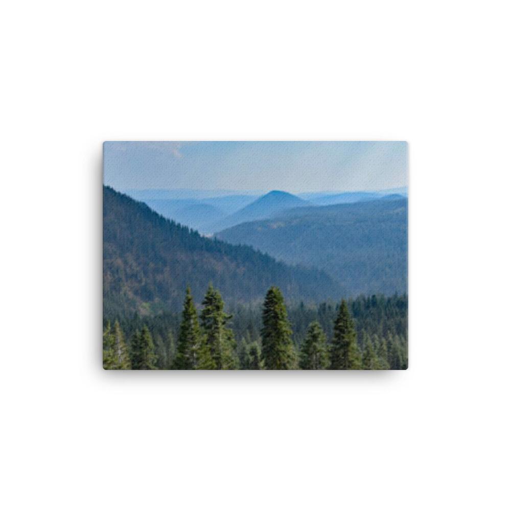 CATSKILL MOUNTAIN VIEW