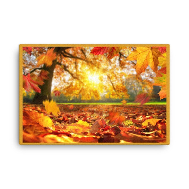 Shandaken Sunlight Series Canvas