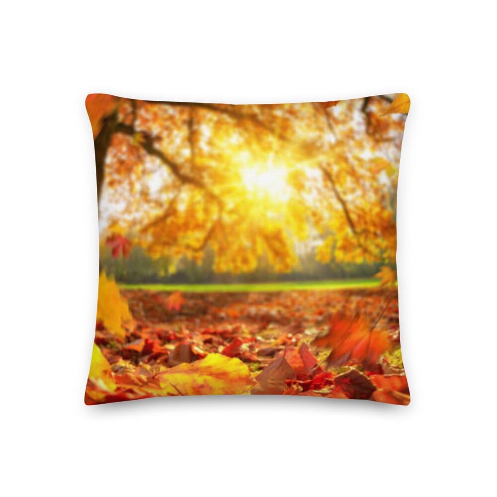 Catskill Mountain Sunlight Pillow