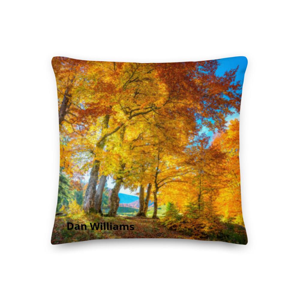 Sunlight Pillow