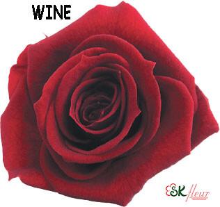 Standard Rose / Wine