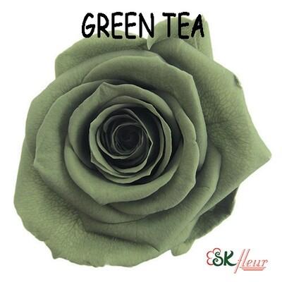 Standard Rose / Green Tea