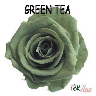 Mediana Rose / Green Tea