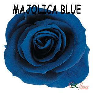 Mediana Rose / Majolica Blue