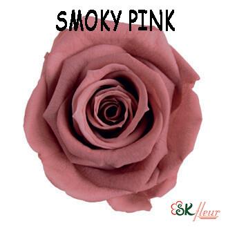 Mediana Rose / Smoky Pink