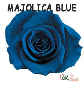 Spray Rose / Majolica Blue