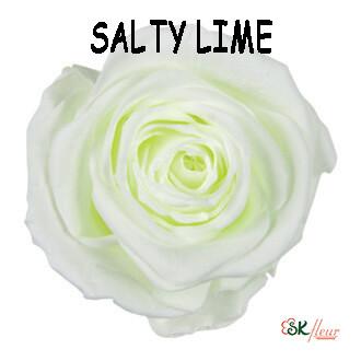 Spray Rose / Salty Lime