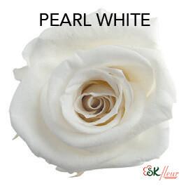 Mediana Short Rose / Pearl White