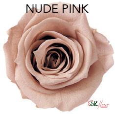 Mediana Short Rose / Nude Pink