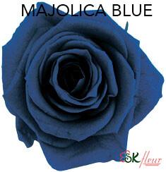 Mediana Short Rose / Majolica Blue