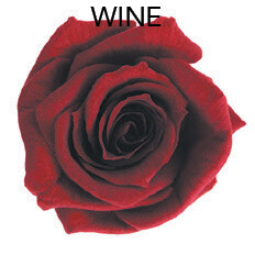 Baby Rose / Wine
