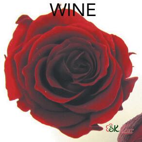 Piccola Blossom Rose / Wine