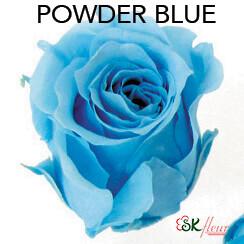 Piccola Blossom Rose / Powder Blue