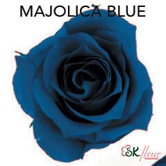 Piccola Blossom Rose / Majolica Blue