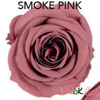 Piccola Blossom Rose / Smoky Pink