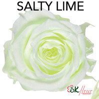 Piccola Blossom Rose / Salty Lime