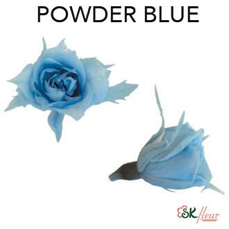 Micro Rose / Powder Blue